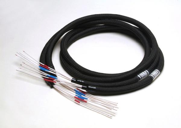 【送料無料】 ACOUSTIC REVIVE スピーカーケーブル/バイワイヤー(4芯・1.0m ペア) SPC-TRIPLE-C