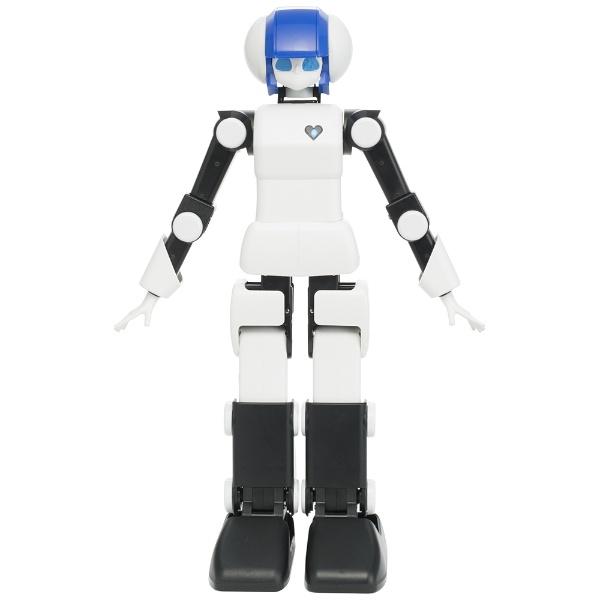 【送料無料】 DMM.COM DMM.make ROBOTS [プリメイドAI 世界最高水準 ダンスコミュニケーションロボット] [RBHM0000000445731927]【STEM教育】