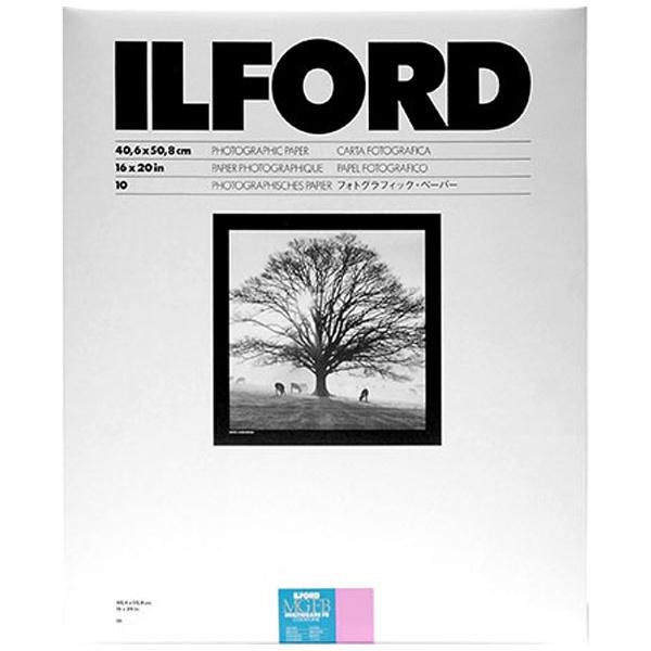 【送料無料】 イルフォード マルチグレードFBクールトーン 1K Glossy(光沢) 小全紙(16×20インチ) 10枚入 MGFBCT 1K 16X20 10