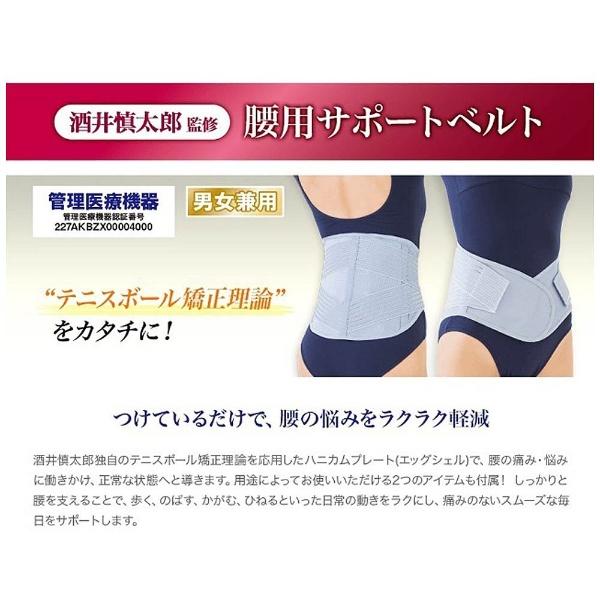【送料無料】 ヴァルテックス VERTEX 腰用サポートベルト-LL酒井慎太郎監修