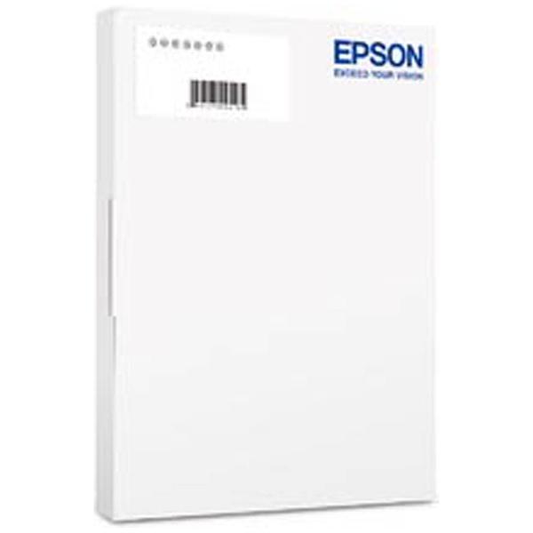 【送料無料】 エプソン EPSON 〔Win版〕財務顧問R4 Professional Ver.17.1 機能改善版 追加1ユーザー