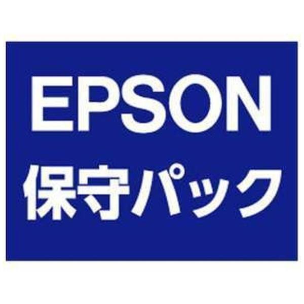 【送料無料】 エプソン EPSON EV-100/105用 エプソンGo-PACK 出張保守(代替お届け) 保証期間終了後1年 GEV011