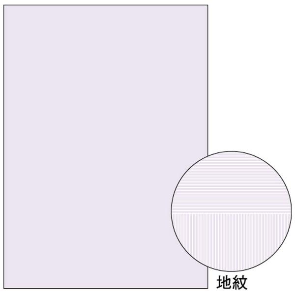【送料無料】 ヒサゴ 〔各種プリンタ〕 マルチプリンタ帳票 コピー偽造予防用紙 浮き文字タイプ A4両面 0.10mm (A4サイズ・1000枚) BP2110Z