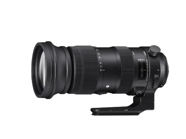 【送料無料】 シグマ カメラレンズ 60-600mm F4.5-6.3 DG OS HSM Sports【キヤノンEFマウント】