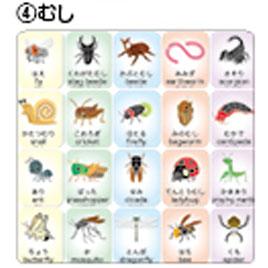 キッズナレッジカード(むし)【学習用品/英語】
