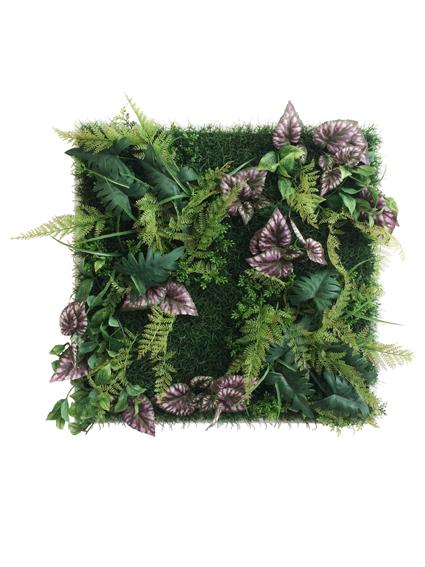 ウォールプラントフレーム Wall Plants frame シダ&ベコニア iwp-60632 壁掛け おしゃれ 送料無料