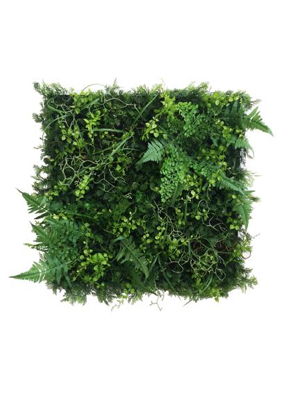 ウォールプラントフレーム Wall Plants frame グリーン&ワイルド iwp-60633 壁掛け おしゃれ