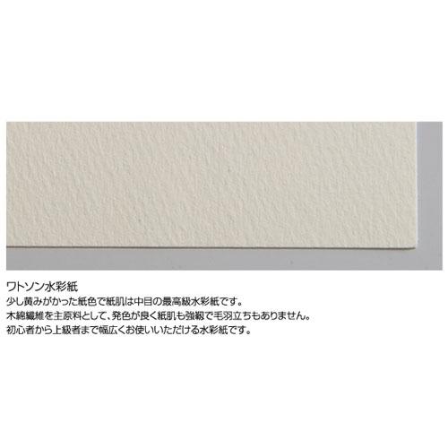 ワトソン水彩紙 厚口 190g 4/6 1091x788mm(100枚入) 送料無料[メール便不可](描画材料 水彩紙)