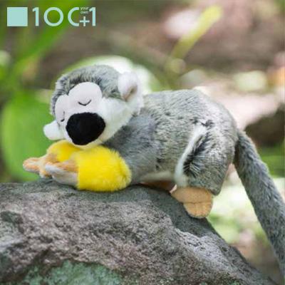 Bigstar Netshop Stuffed Toy Squirrel Monkey Sleep Sm162 Of