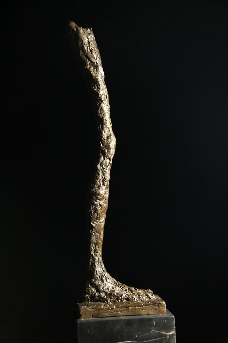 【送料無料】超大型ブロンズ像 足 足 彫刻 銅像 ジャコメッテ50cm 名作インテリア 彫刻 銅像, アカギムラ:d7282cff --- sunward.msk.ru