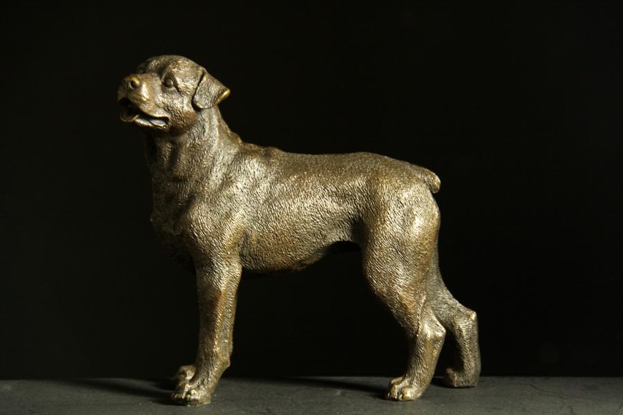 【送料無料】動物ブロンズ像『犬』◇18cm◇大名品J.Moigniez作