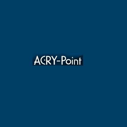 レーシングタイプスクリーン クリア アクリポイント(ACRY-Point) RS250R(01~10年)