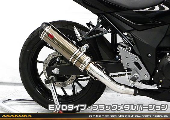 TTRタイプマフラー EVOタイプ ブラックメタルバージョン ASAKURA(浅倉商事) GSX250R(2BK-DN11A)