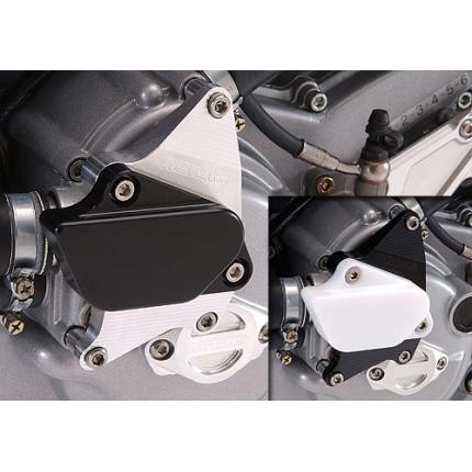 レーシングスライダー ウォーターポンプ AGRAS(アグラス) DUCATI MonsterS4・S4R