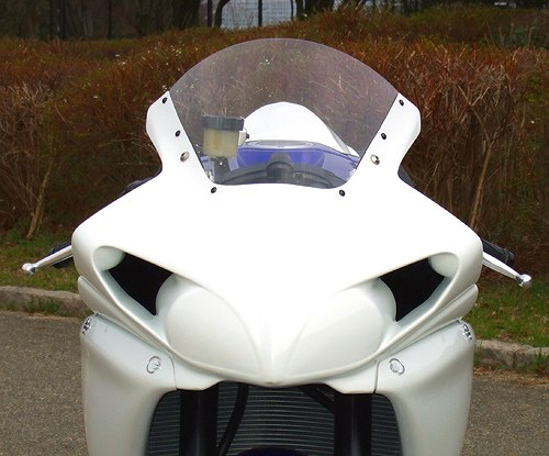 スクリーン CLEVER WOLF RACING(クレバーウルフレーシング) YZF-R1(09~14年)