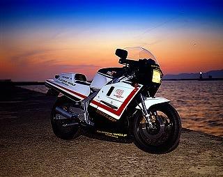 フルカウルAssy(白ゲルコート仕上げ) CLEVER WOLF RACING(クレバーウルフレーシング) RG500γ