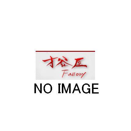 ビキニカウル ストリート 黒ゲル KSR110 SAITANIYA(才谷屋ファクトリー)