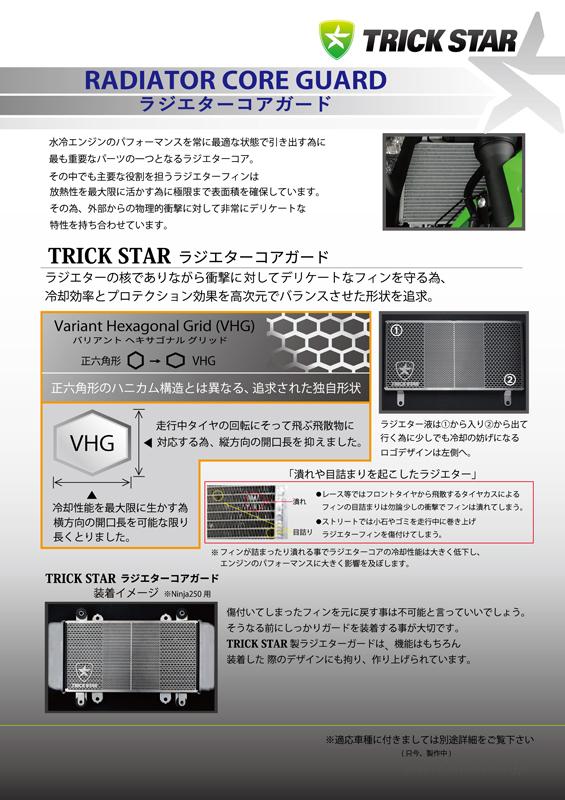 ラジエターコアガード ブラックメッキ TRICK STAR(トリックスター) KATANA(刀)2BL-GT79B
