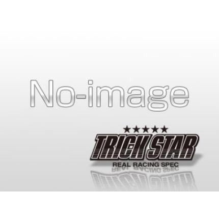レーシング機械曲スリップオンショットガンカーボン エンブレム無 ストレート TRICK STAR(トリックスター) ZZR1400(06~07年)