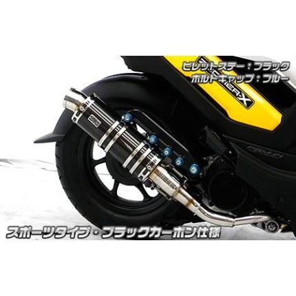 ズーマーX(ZOOMERX) アニバーサリーマフラー ブラックカーボン スポーツタイプ ウイルズウィン(WirusWin)