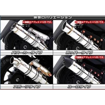 シグナスX(1型)国内SE12J アニバーサリーマフラーユーロタイプ カーボン仕様 ウイルズウィン(WirusWin)