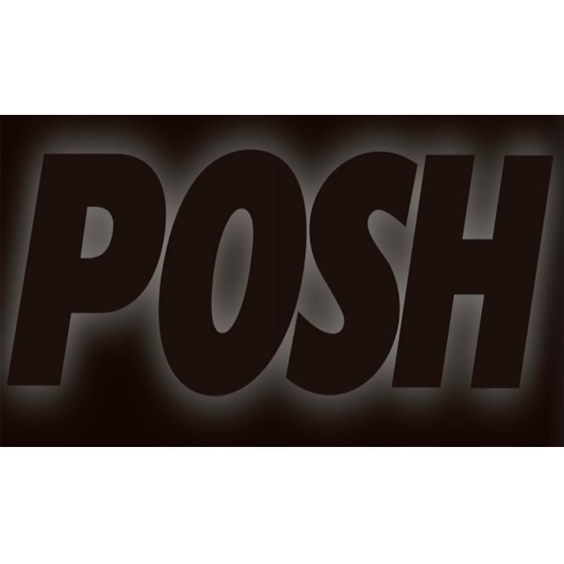 POSH Faith ポッシュフェイス 031110-PK ボアアップピストンキット用 補修用ピストンキット 510cc 1シリンダー ZEPHYR400χ ゼファー400カイ