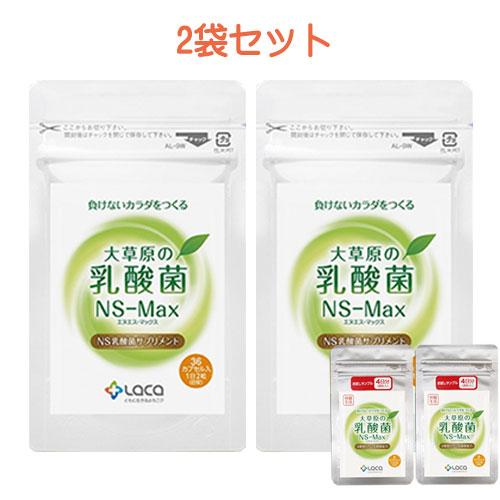 大草原の乳酸菌(NS-Max×2袋セット)さらに(8粒サンプル×2袋付き)【送料無料】乳酸菌 サプリメント/年齢を重ねるにつれて減っていく善玉菌、増えていく悪玉菌。【36カプセル×2袋】◇NS-Max001 目玉