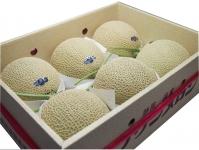 静岡名品「クラウンメロン」1ケース(6玉入)(1玉1.3Kg)(等級:白)