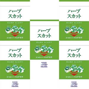 【初回限定6袋まで購入可・特別価格】ハーブスカット90粒 ハーフサイズ5袋(約75日分)《宅配便送料無料》