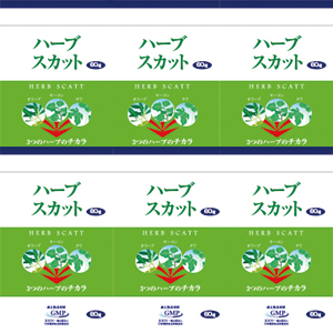 【初回限定6袋まで購入可・特別価格】ハーブスカット60粒 お試し10日分6袋《宅配便送料無料》
