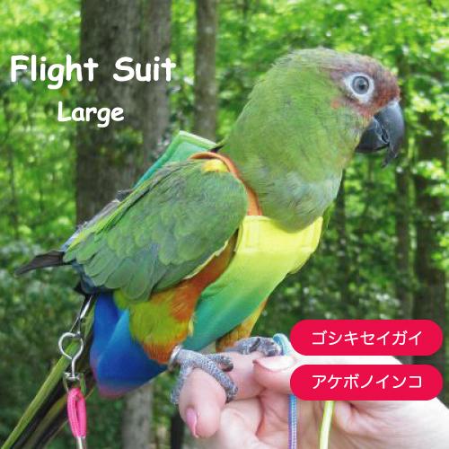 対応する鳥の種類 ゴシキセイガイ アケボノインコ フライトスーツ Avian Fashions ラージ 迅速な対応で商品をお届け致します 売れ筋