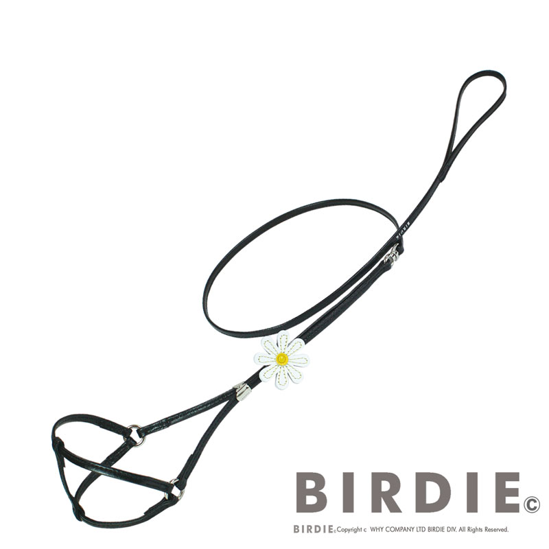 pet accessories birdie shop