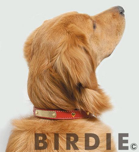 【BIRDIE(バーディ)名前と電話番号が刻印できる大型犬用迷子防止首輪】ハートメタルIDカラー size45