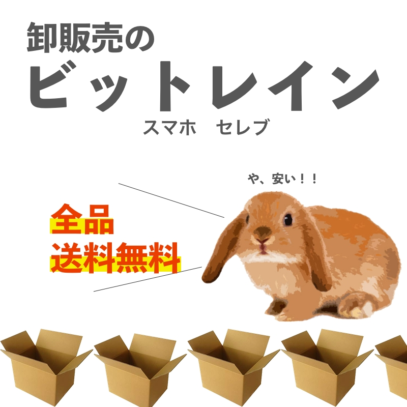 卸販売のビットレイン:高品質の商品を安価でお届け致します。