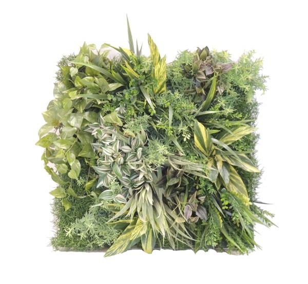 壁に造花の植物でディスプレイできる商品を販売しています 壁面造花装飾ディスプレイG 人工植物 アートフレーム 即日出荷 グリーン 緑化 お買い得 おしゃれ インテリア 室内