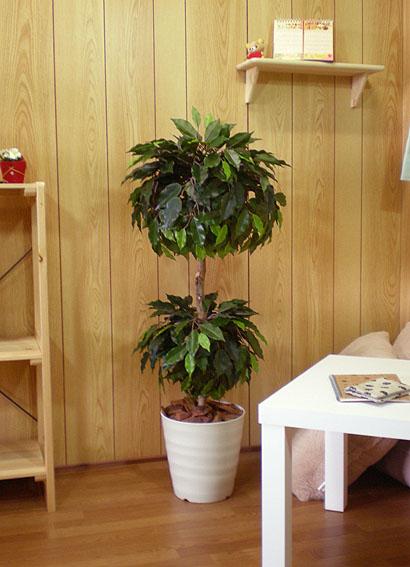 ベンジャミンラウンドダブル 100cm (グリーン 人工樹木 人工観葉植物 造花 1m)