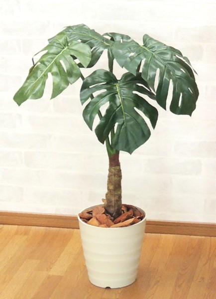 スプリットフィロプラント 高さ80cm (グリーン 造花樹木 人工観葉植物)