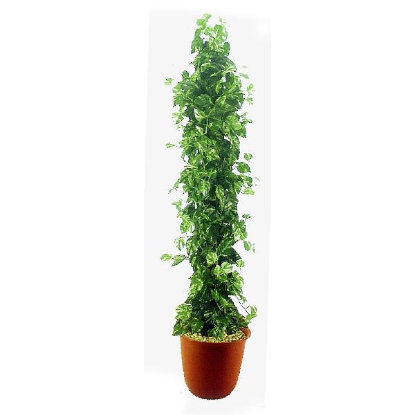 ポトスタワー 180cm (人工観葉植物 造花 人工樹木 フェイクグリーン 1.8m おしゃれ 室内 飾り 大型 ディスプレイ 装飾)