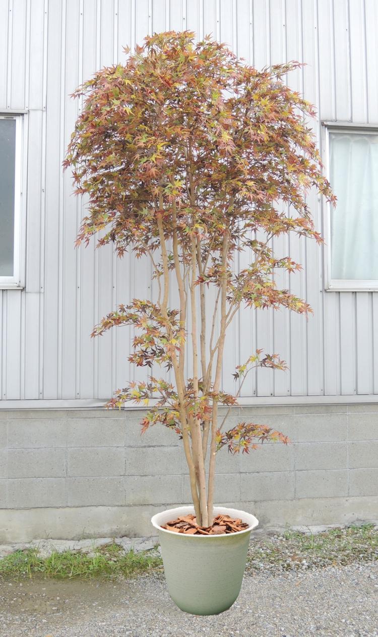 卓越 造花 直営ストア インテリア 観葉植物 人工樹木 おしゃれ 室内 大型サイズの紅葉立ち木 高さ300cm レッド 人工観葉植物 カエデ 造木 もみじ 赤 モミジ
