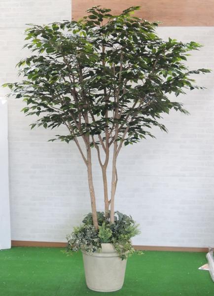 大型商品 ベンジャミン 組み立て式 250cm (造花 インテリア 人工観葉植物 フェイクグリーン おしゃれ 室内 樹木 店舗 装飾)