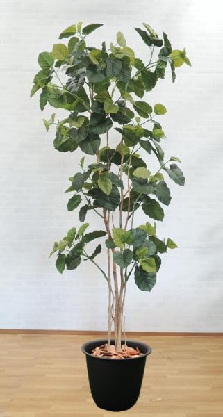 大型サイズの人工観葉植物 ウンベラータ 高さ270cm(インテリア 造花 樹木 造木 フェイクグリーン 室内向け)