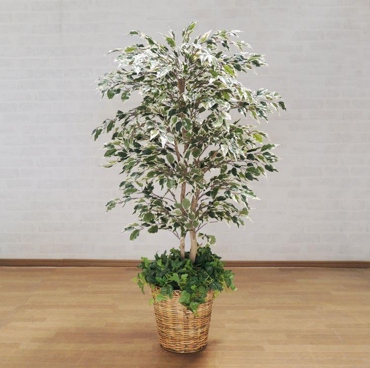 インテリア 迅速な対応で商品をお届け致します フェイクグリーン フィカス 造花 鉢付き お洒落 ナチュラル ベンジャミン スターライト 人工観葉植物 110cm 1.1m 全国一律送料無料