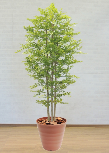 明るい葉のトネリコ 210cm (造花 インテリア おしゃれ 室内 人工 観葉植物 大型 フェイク グリーン プランツ 装飾 ゴールデンリーフ 2.1m)