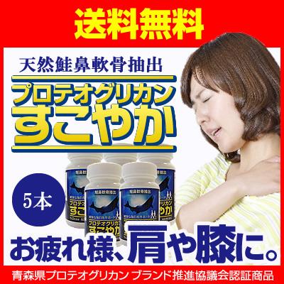 プロテオグリカン すこやか サプリメント グルコサミン/非変性II型コラーゲン コンドロイチン 含有/ 60粒 5本セット