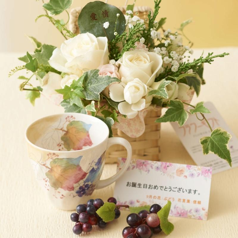誕生日プレゼント 観葉植物 ギフト 贈り物 花 新築祝い 注文 コーヒーの木 鉢花贈る 送料無料 開店祝い 7号鉢 移転祝い 宅配 配送