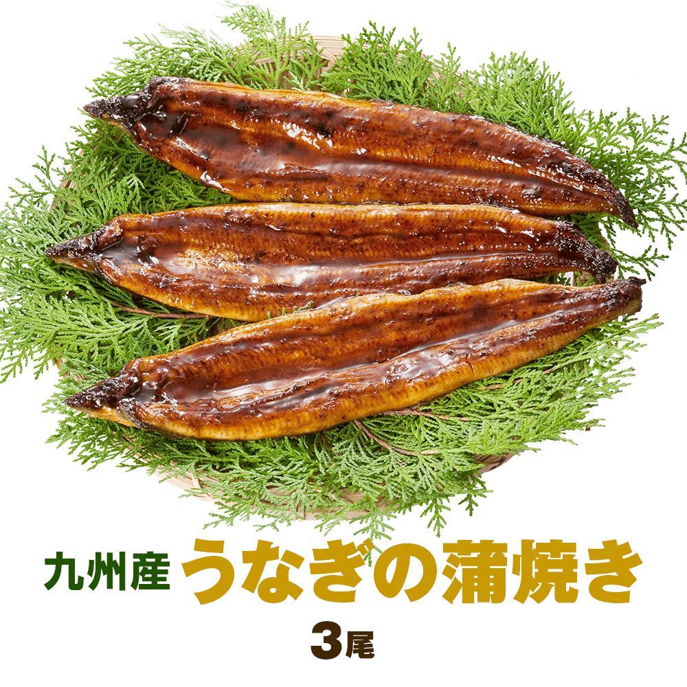 九州産うなぎの蒲焼き4尾 (1尾140g~150g) 特製たれ、山椒付き 国産 鰻 ウナギ 土用の丑の日 お中元 ギフト