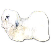 • Lhasa apso ◆ Odell dog stickers