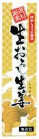 生おろし生姜(チューブ) オーサワジャパン 40g×8個