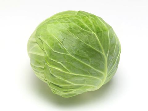 長野県産 【フルヤの安心野菜】【冷蔵】有機キャベツ 1玉