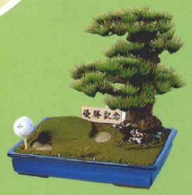 ゴルフ松(小型)